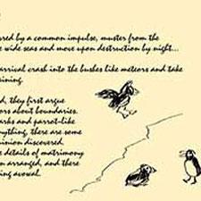 birdwatchers-journals-animation