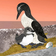 legend-of-the-great-auk-animation