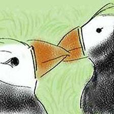 seabird-symphony-animation